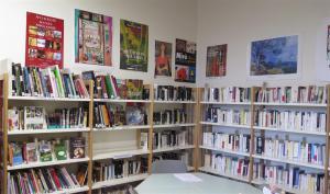 la bibliothèque : une partie de la collection