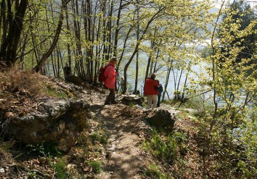 le printemps au bord du lac