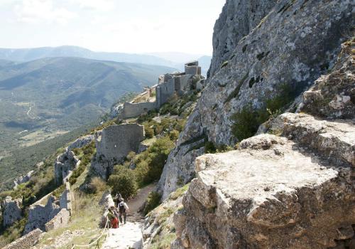 nid d'aigle : château de Peyrepertuse