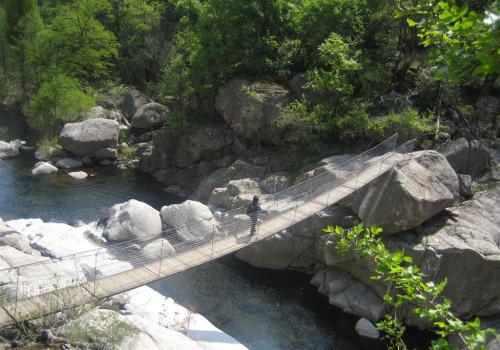 gorges du Chassezac : au fond du canyon