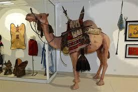 Musée du Sahara